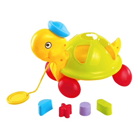 Pull Along Shape Sorting Tortoise